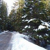 D-4665-weg-nr-30-monte-pana-seiser-alm-winter.jpg