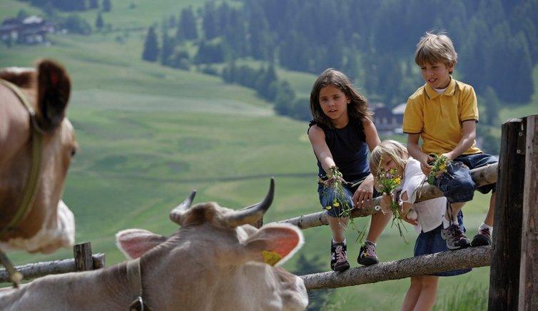 Grödner Kinderwochen, Foto: Frieder Blickle, © Südtirol Marketing Gesellschaf SMG