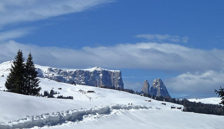 Winter-walking-tour from Monte Pana to Saltria, Foto: AT, © Peer