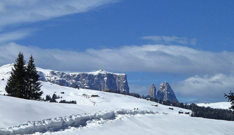 Winterwanderung von Monte Pana nach Saltria, Foto: AT, © Peer